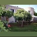 EasyPiso ES Alquilo estudio en Sta Eulalia hasta Junio - Todo, Ibiza - € 350 por Mes - Foto 1