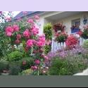 Appartager FR chambre chez l ' habitant - Le Relecq-Kerhuon, Brest Périphérie, Brest - € 300 par Mois - Image 1
