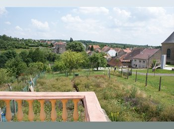 Appartager FR - a louer chambre très spacieuse avec ou sans meuble - Metz, Metz - €350