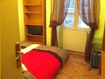 Appartager FR - chambre a louer - Romans-sur-Isère, Valence - €350