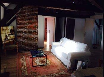 Appartager FR - Colocation appartement refait à neuf tout confort - Roubaix, Lille - €500