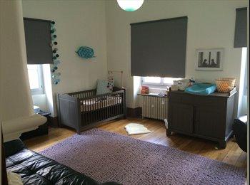 Appartager FR - Cherche colocataires appartement 140m2 hypercentre - Dijon, Dijon - €500