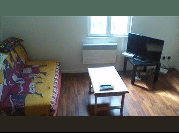 Appartager FR - appartement de 41m² en duplex, plein centre-ville - Dijon, Dijon - €280