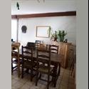 Appartager FR Chambre dans grande maison de 200m² - Laxou, Nancy Périphérie, Nancy - € 270 par Mois - Image 1