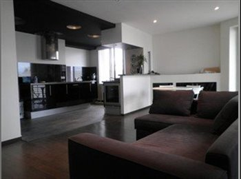 Appartager FR - chambre à louer - Centre, Rennes - €300