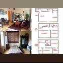 Appartager FR vaste chambre à sous-louer dans colocation - Saint-Etienne, Saint-Etienne - € 260 par Mois - Image 1