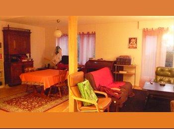 Appartager FR - cherche colocataire dans une maison - Villers-lès-Nancy, Nancy - €267