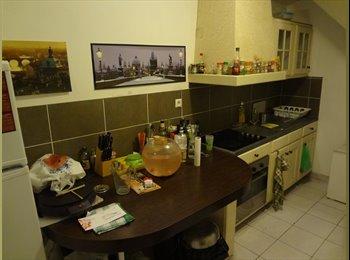 Appartager FR - colocation maison lille - bois blancs 290€/mois - Bois Blancs, Lille - €290