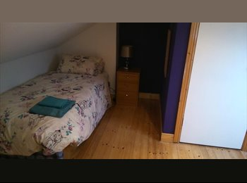 EasyRoommate IE - Large Attic Room for Rent - South Dublin City, Dublin - €500