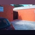CompartoDepa MX Amueblados, Luz, Internet, A/C, Gas, Cable - Campeche - MX$ 3500 por Mes - Foto 1