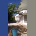 CompartoDepa MX Se buscan residentes para casa compartida - Mérida - MX$ 1700 por Mes - Foto 1