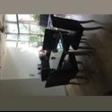 CompartoDepa MX BUSCO ROOMIE depto LOFT en SM16 - Cancún, Cancún - MX$ 4000 por Mes - Foto 1