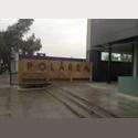 CompartoDepa MX Busco roomie depa en Polanco(a un costado deCarso) - Miguel Hidalgo, DF - MX$ 8000 por Mes - Foto 1