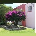 CompartoDepa MX BUSCO ROOMIE PARA COMPARTIR CASA - Delegación Centro Histórico, Querétaro - MX$ 2500 por Mes - Foto 1