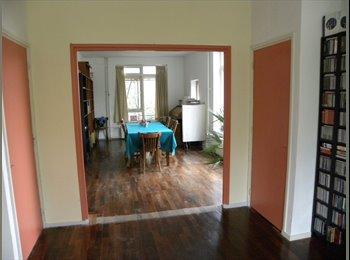EasyKamer NL -  ladiesrooms perfect for internships - Centrum, Den Haag - €425