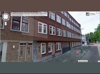 EasyKamer NL - Studentenhuis Rotterdam - Tarwewijk, Rotterdam - €1000