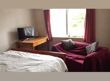 NZ - Room available in the Wood, Nelson - The Wood, Nelson - $650