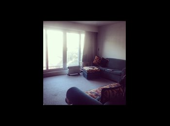NZ - Room Available - Te Aro, Wellington - $867