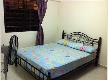 EasyRoommate SG - Room for rent at TelokBlangahCrescent-INDIAN owner - Telok Blangah, Singapore - $750