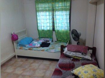 EasyRoommate SG - URGENT!!Common Room For Rent - Sengkang, Singapore - $700