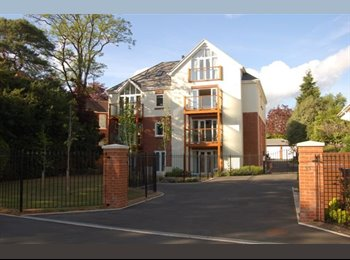 EasyRoommate UK - Luxury modern apartment, Double bedroom, Parkstone - Poole, Poole - £500