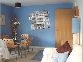 EasyRoommate UK - Room available in gorgeous modern city centre flat - Canton, Cardiff - £350