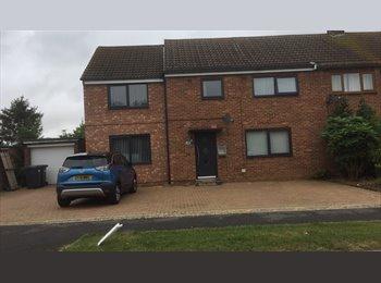 EasyRoommate UK - 1 double bedroom - Huntingdon, Huntingdonshire - £325