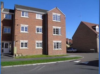 EasyRoommate UK - Double room to let in lovely modern flat - Mansfield, Mansfield - £395