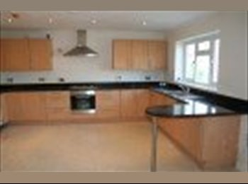 EasyRoommate UK - TW5 DBL BED: SKY,FIBRE OPTIC WiFi, WKLY CLEANING - Hounslow, London - £635