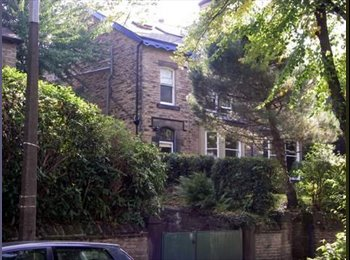EasyRoommate UK - Lovely Victorian semi - Professional houseshare - nether Edge, Sheffield - £1625