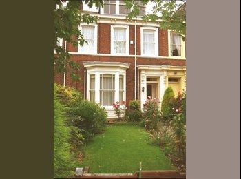 EasyRoommate UK - Professional or Post Grad required - Sunderland, Sunderland - £385