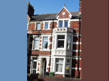EasyRoommate UK - friendly houseshare in great central location - Cardiff City, Cardiff - £375