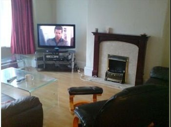 EasyRoommate UK - Friendly House Share - Openshaw, Manchester - £300