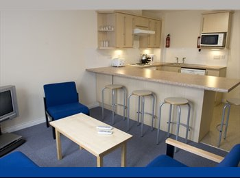 EasyRoommate UK - Fantastic New Shared Flats - Lincoln, Lincoln - £393