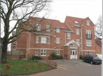 EasyRoommate UK - Large double room available in two bedroom flat - Handsworth, Sheffield - £300