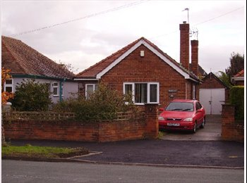 EasyRoommate UK - db room in nice clean detached bungalow - Saighton, Chester - £347