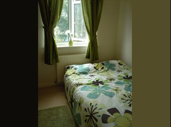 EasyRoommate UK - AVAILABLE NOW!!! Double room in Stafford - Stafford, Stafford - £275