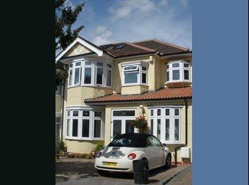 EasyRoommate UK - En-suite double room 25 minutes to Central London - Redbridge, London - £550