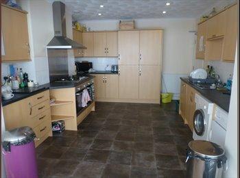 EasyRoommate UK Beautiful ensuite Rooms to let - Exeter, Exeter - £550 per Month,£127 per Week - Image 1