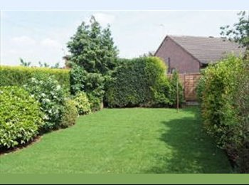 EasyRoommate UK - 1 bedroom available | Chesterfield Centre - Chesterfield, Chesterfield - £450