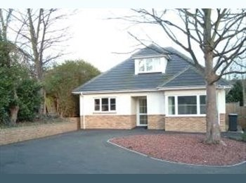 EasyRoommate UK - Room offered in Winton for Professional Female - Winton, Bournemouth - £430