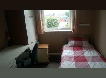 EasyRoommate UK - Room To Let In House In Colchester - Colchester, Colchester - £300