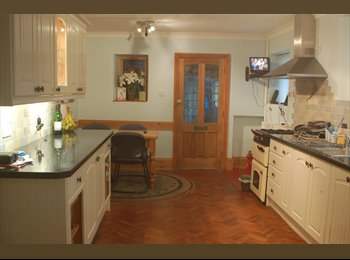 EasyRoommate UK -  1 large double room Paignton available 10th may - Paignton, Paignton - £390