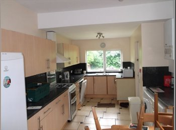 EasyRoommate UK - LARGE WELL FITTED HOUSE IN HUNTERS BAR - Ecclesall, Sheffield - £280