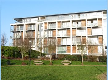 EasyRoommate UK - A Luxury Two Bed Apartment - Stonehouse, Plymouth - £398