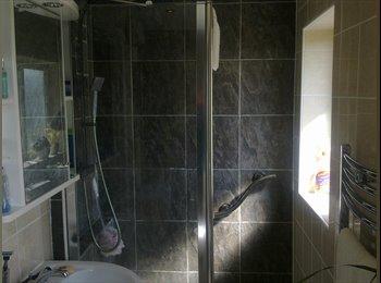 EasyRoommate UK - Spacious room in superior large apartment - Paignton, Paignton - £390