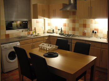 EasyRoommate UK - single room for rent - Chesterfield, Chesterfield - £350