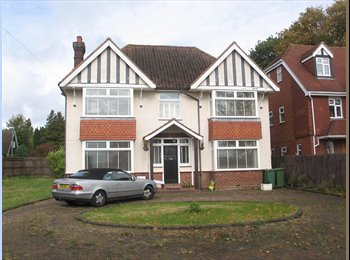 EasyRoommate UK - one bedroom available in large house - Tunbridge Wells, Tunbridge Wells - £500