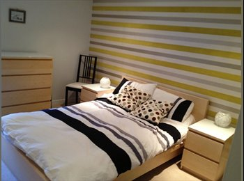 EasyRoommate UK - Double Room available in Modern Flat - Bridgeton, Glasgow - £550
