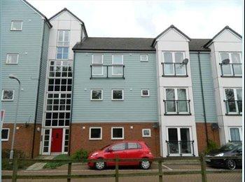 EasyRoommate UK - Double room in modern flat - Wolverton Mill - Wolverton, Milton Keynes - £400